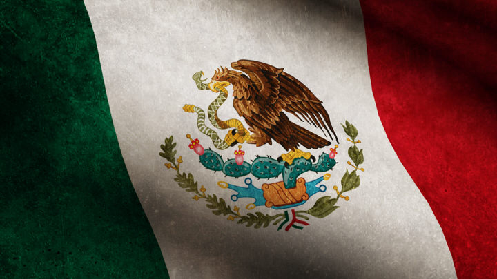 Mexico State Flag