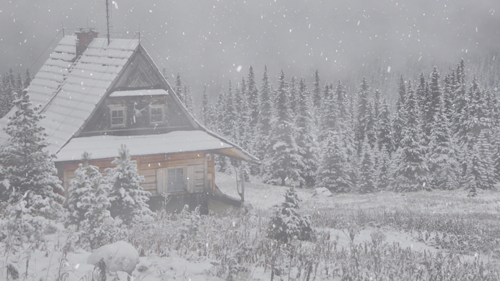 Snowy Cabin in the Woods